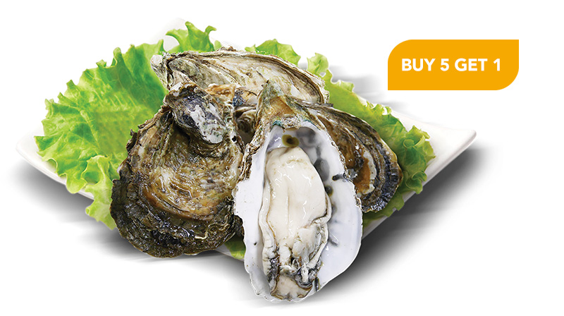 Oyster Promotion