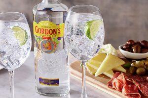 Gordon's Gin & Tonic Cocktail Recipe